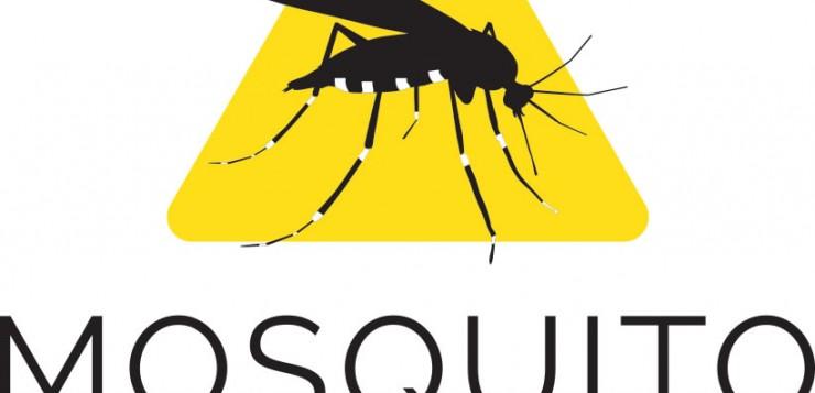 Invasión del mosquito tigre en España: salud pública y cambio global
