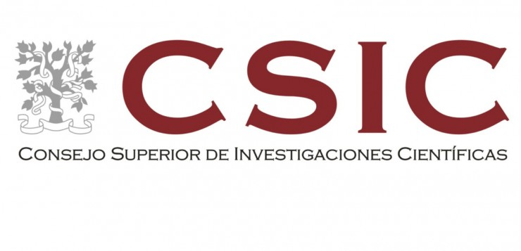 CSIC LOGO 2