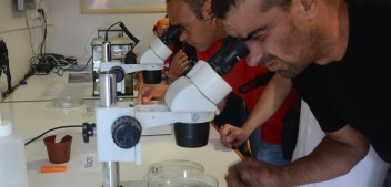 Cap de setmana de ciència per tothom amb el Movilab