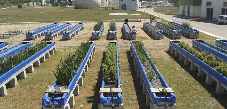 Avaluació de la capacitat d'autodepuració en rius urbans