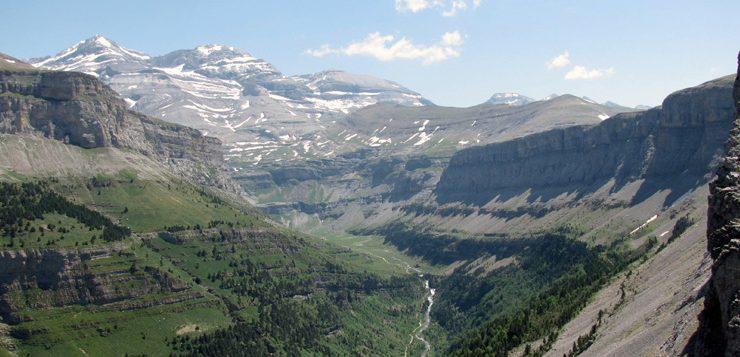 Dinàmica de la biodiversitat en muntanya. Xarxa de seguiments d'espècies i hàbitats, per avaluar els efectes del canvi global