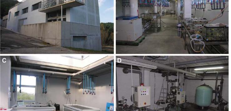 Equipament del Laboratori d'Experimentació amb Organismes Vius (LEOV)