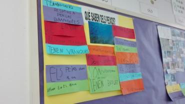 Els alumnes posen en comú els coneixements previs que tenen dels peixos.