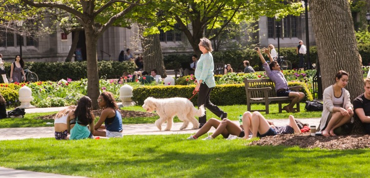 Spring on campus, May 2016. (photo by Jean Lachat)